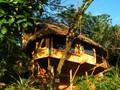Vue du Bungalow Nature Maara, niché dans le jardin tropical du Vanira Lodge