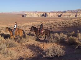 Vivez une expérience inoubliable lors d'une balade cheval