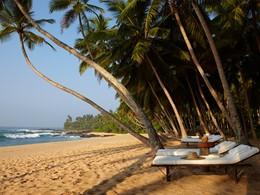 Détendez vous à l'ombre des palmiers de l'Amanwella au Sri Lanka