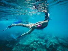 Explorez les exceptionnels fonds marins à proximité
