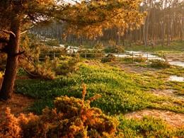 Partez à la découverte de la région durant votre séjour à l'Areias do Seixo