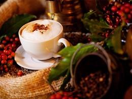 Café fraîchement moulu