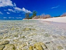 Plage et eau translucide sur l'île de Bird Island