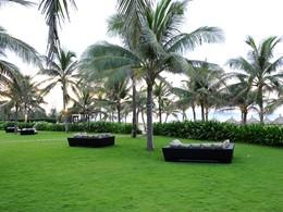 Jardin de l'hôtel Boutique Hoi An Resort à Hoi An