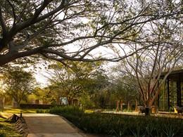 Le jardin luxuriant de l'hôtel Chable Resort & Spa