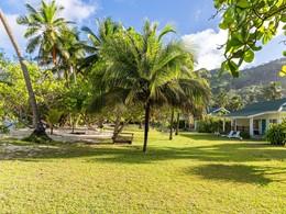 Le jardin verdoyant des Chalets d'Anse Forbans