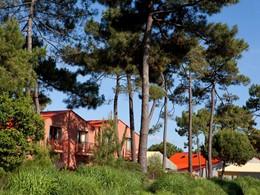 Le Club Med La Palmyre Atlantique est situé en plein coeur d'une pinède