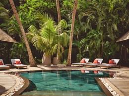 La piscine et son ambiance tropicale