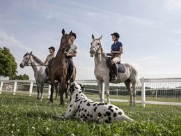 Profitez d'une balade à dos de cheval au Club Med Vittel Le Parc