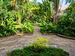 Le magnifique jardin verdoyant