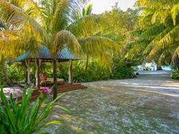Le jardin du Denis Private Island aux Seychelles