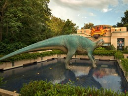 Explorez le monde des dinosaures au Disney's Animal Kingdom.