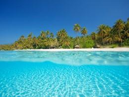 Profitez des eaux cristallines du lagon
