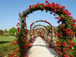 Le jardin de l'hôtel Finca Cortesin situé à Marbella
