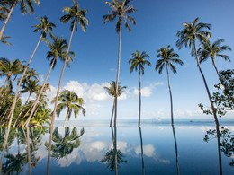 Profitez de la superbe piscine du Four Seasons Resort
