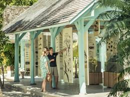Découvrez la flore et la faune exotique des Seychelles