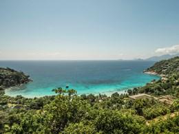 Un paradis tropical