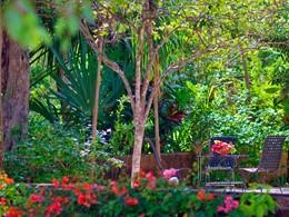 Le jardin botanique de l'Hacienda Santa Rosa à Yucatan