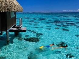 Snorkeling à l'hôtel Hilton Resort and Spa situé à Moorea