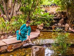 Promenez vous au cœur du jardin luxuriant