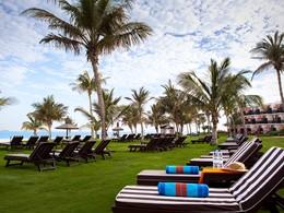 Jardin du Palm Tree Court situé à Dubaï