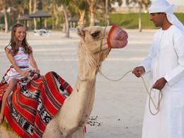 Balade à dos de chameau au Palm Tree Court