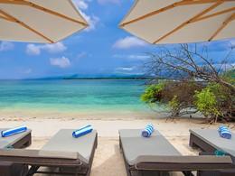 Détente à l'ombre des parasols face à l'océan