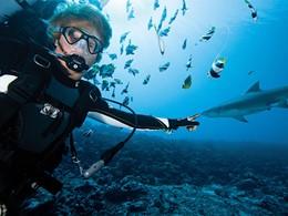 Des spots de plongée uniques au monde