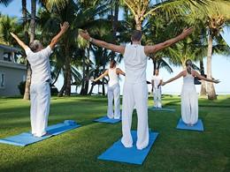 Séance de yoga dans le jardin verdoyant