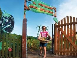 Le jardin organique de l'hôtel Le Dune Resort et Spa