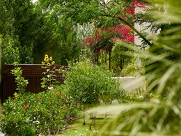 Le jardin verdoyant de l'hôtel Lindian Village