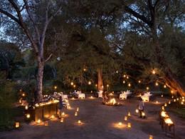 Un fabuleux dîner Bush au Lion Sands en Afrique du Sud