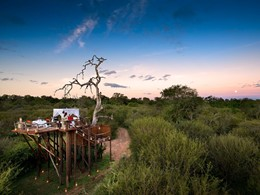 Chalkley Treehouse du Lion Sands en Afrique du Sud