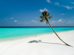 La plage immaculée du LUX* North Malé aux Maldives