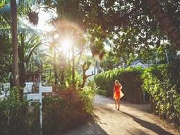 Balade dans le jardin luxuriant
