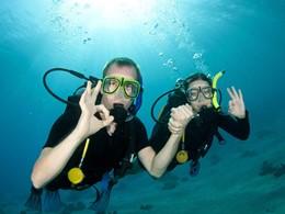 Explorez dans les fonds marins qui entourent le Luxury Bahia Principe