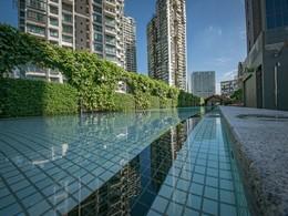 Profitez de la superbe piscine de l'hôtel M Social Singapore