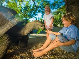A la rencontre de la faune à l'hôtel Maritim Resort