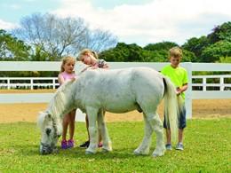 Les enfants pourront s'amuser avec les poneys du Maritim