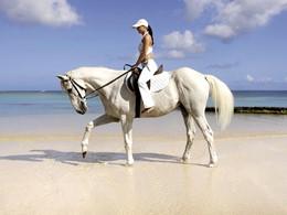 Balade à cheval sur la plage du Maritim Resort & Spa