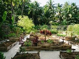 Jardin d'épices de l'hôtel
