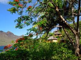 Jardin de l'hôtel Keikahanui Pearl Lodge de Nuku Hiva en Polynésie