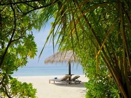 Détente face aux eaux turquoises de l'Océan Indien à l'Olhuveli