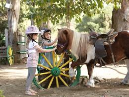 Les enfants auront droits à de nombreuses activités