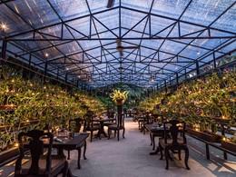 Le restaurant Botanica