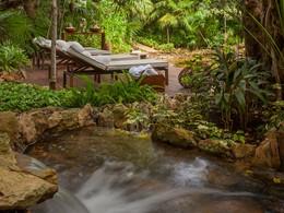 Le spa est ouvert aux douces brises et à l'environnement naturel magnifique de la jungle