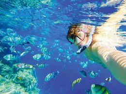 Explorez les exceptionnels fonds marins de l'île Maurice au Sakoa