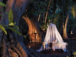 Dîner dans la jungle du Shangri-La's Villingili