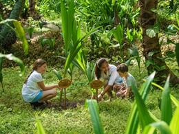 Activité pour enfants au Shangri-la's Villingili