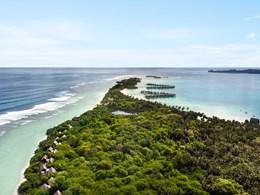 L'île est recouverte d'une végétation dense